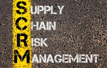 Risk management in the supply chain